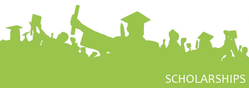 Colaraz Scholarship program, scholarships in Pakistan, under graduate scholarships in Pakistan
